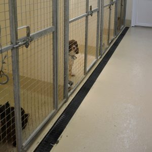 Extra Large Kennels